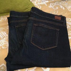 Paige Jeans Bundle